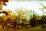 【観覧車-5】京都市動物園