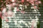 【2019年版】フィルムカメラ好きにオススメしたい35mmフィルム〜ふんわり・レトロ編の作例