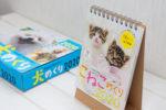 2020年度版「猫めくり」カレンダーコンテストに応募したら受賞を通り越して表紙になった